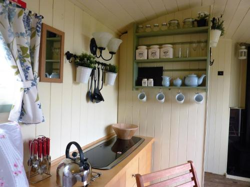 A kitchen or kitchenette at The Buteland Stop Rosie Shepherds Hut