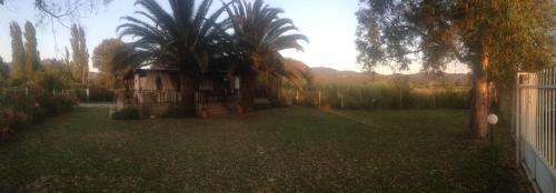 Κήπος έξω από το Villa Niki