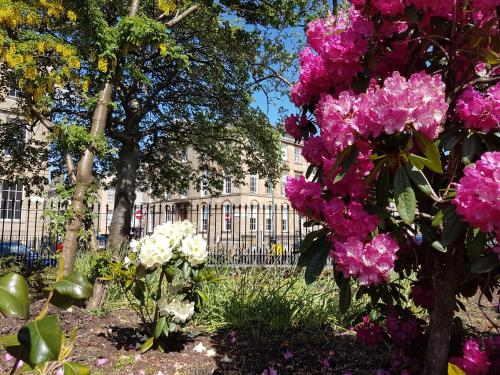 A garden outside Blythswood Square Apartments