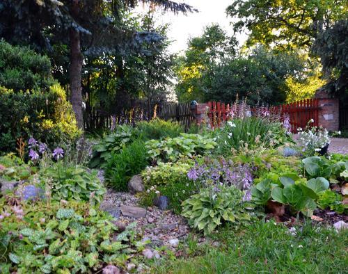 Ogród w obiekcie Markowe Siedlisko