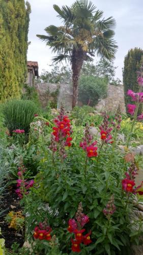 A garden outside Hotel Rural San Pelayo