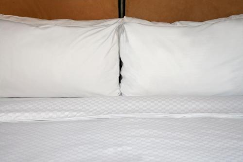 A bed or beds in a room at Four Points by Sheraton Edmonton Gateway