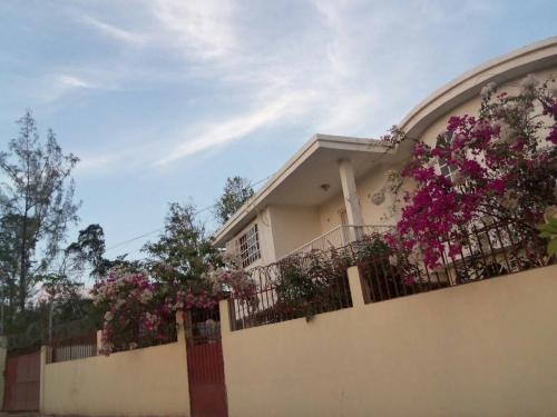 Comfort rental house