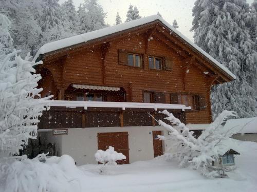 Chalet Murmeli im Winter