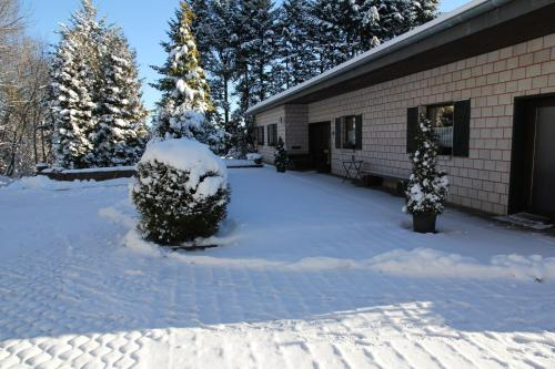 Ferienhaus am Maibüsch - rollstuhlgerecht im Winter