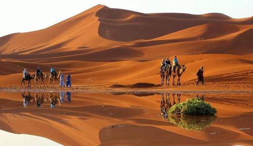 Sahara Morocco Luxury Camp