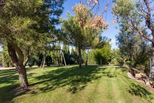 A garden outside Quinta da Alquimia