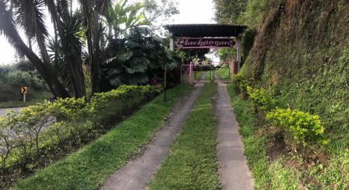 A garden outside Finca Machangara
