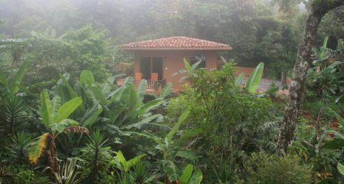 The Casita at The Boquete Hacienda
