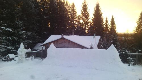 Гостевой дом Алешина Изба зимой