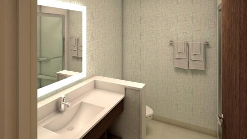 A bathroom at Holiday Inn Express - Auburn Hills South, an IHG Hotel