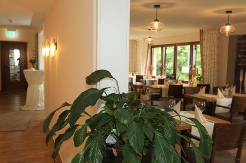 A restaurant or other place to eat at Landidyll Landhaus Liesetal