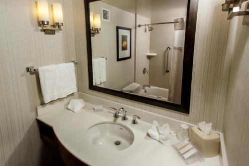 Salle de bains dans l'établissement Hilton Garden Inn New York/Staten Island
