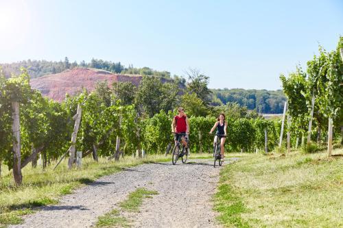 Radfahren an der Unterkunft Hotel Garni Schöne Aussichten oder in der Nähe