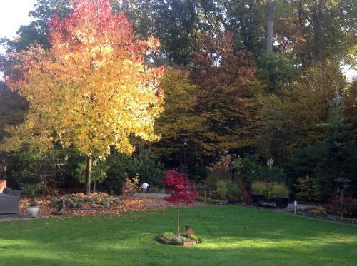 A garden outside Haus Drossel