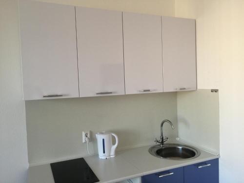 Кухня или мини-кухня в Apartment on Stolichnaya
