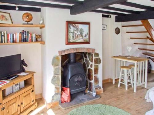 A television and/or entertainment center at Mill Wheel Cottage