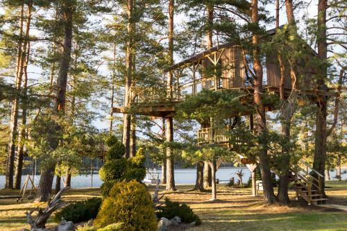 Treehouse Čiekurs