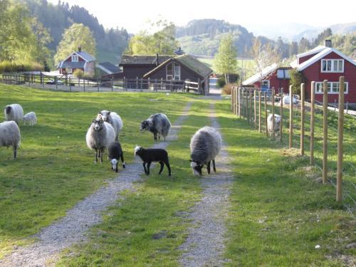 Skjerping gård