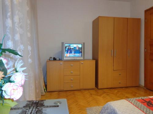 A television and/or entertainment center at Zoya Apartment