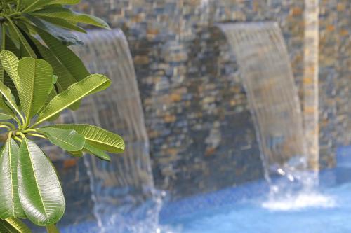 The swimming pool at or close to The Palms Denarau Fiji