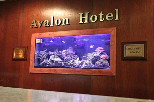 A television and/or entertainment center at The Avalon Hotel and Conference Center