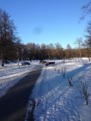 Apartment Okruzhnaya 3 зимой