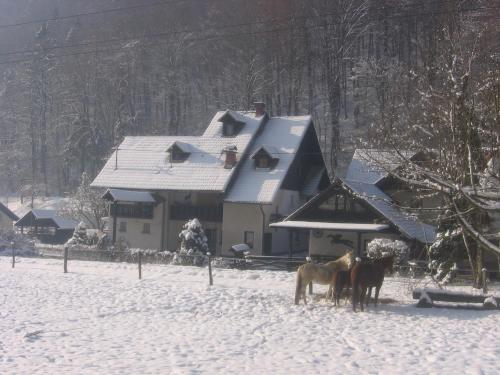 Apartments Gubanec during the winter