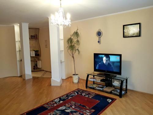Телевизор и/или развлекательный центр в Ratslinden Apartment