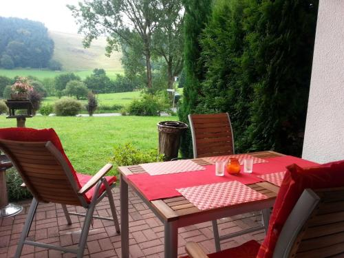 Cosy apartment over Usseln with private covered terrace
