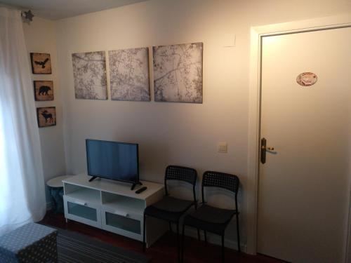Una televisión o centro de entretenimiento en Vivienda Turística La Moleta