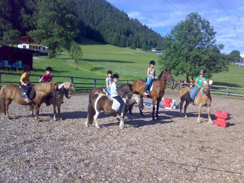 Катание на лошадях на территории апартаментов/квартиры или поблизости