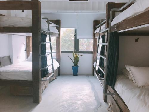 A bunk bed or bunk beds in a room at The Dorm Saigon