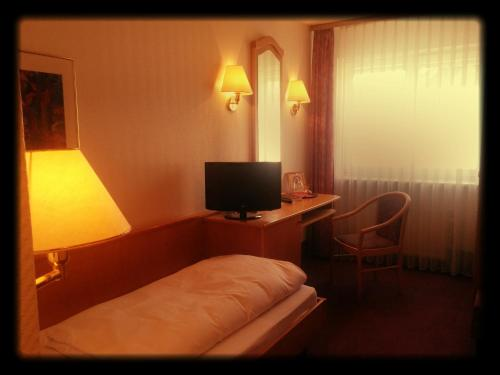 A television and/or entertainment center at Hotel-Restaurant Zum Loewen