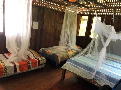 Cama o camas de una habitación en Luminosa Montezuma Hostel