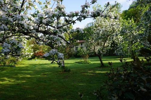 A garden outside Tourné