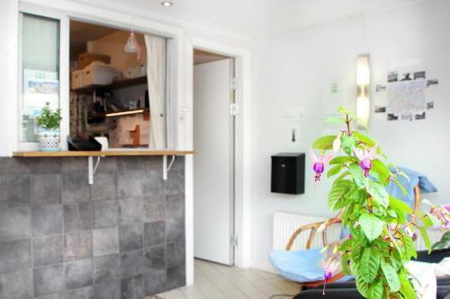 TV a/nebo společenská místnost v ubytování Rut & Ragnars Vandrarhem