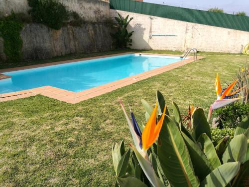 The swimming pool at or near Apartamento Patel