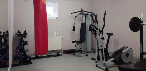 The fitness center and/or fitness facilities at Hotel ELBRIVERA Alt Prester