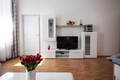 A television and/or entertainment center at Family Duplex on Wenceslas square