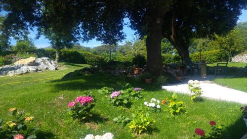 A garden outside Apartamentos La Encina