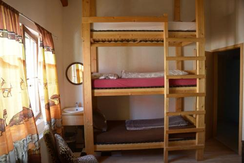 A bunk bed or bunk beds in a room at Gerry `s Backpacker