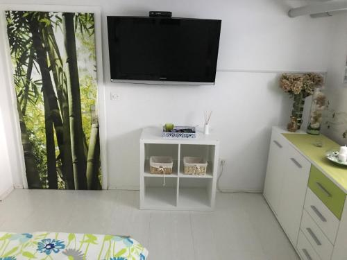 A television and/or entertainment center at Apartment Drava