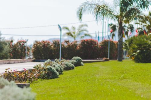 A garden outside Kora Park Resort