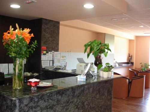 The lobby or reception area at Hotel Sant Quirze De Besora