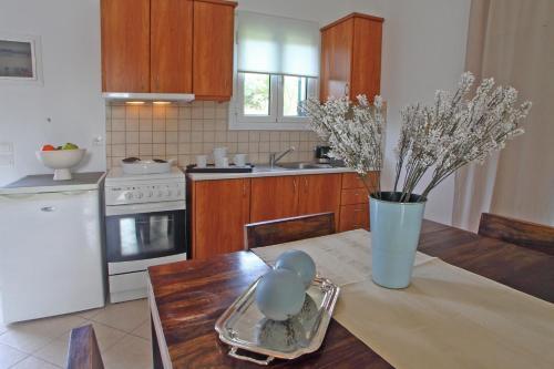 Cucina o angolo cottura di Echinades Resort