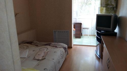 Телевизор и/или развлекательный центр в Apartment Чебрикова