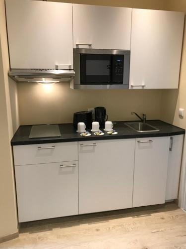 A kitchen or kitchenette at Hotel Select Suites & Aparts