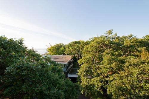 A bird's-eye view of Oak Bay Beach Hotel