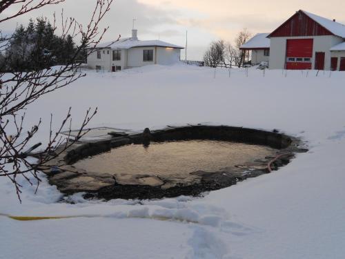 Nes Guesthouse að vetri til